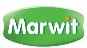 Marwit_logo