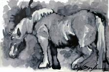 caballo lento