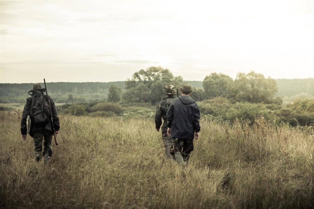 polowanie (8)