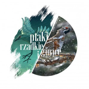 ilustracja_zaproszenie_PRiG_jazabek_high