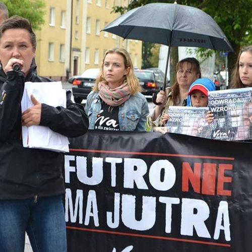 Pikieta przeciwko budowie fermy w Lubosinie – czy takiej Polski chce poseł Ajchler?