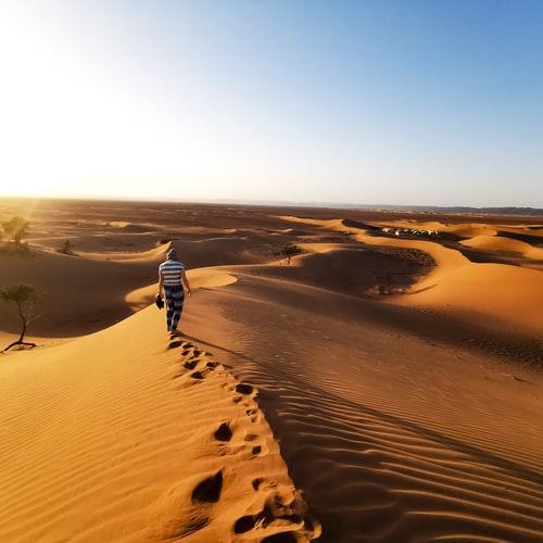 Polska pustynnieje z dnia na dzień