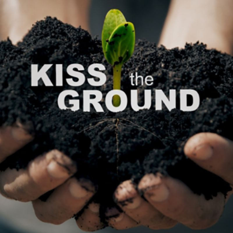"""""""Kiss the ground"""". Dziś premiera wyjątkowego dokumentu"""
