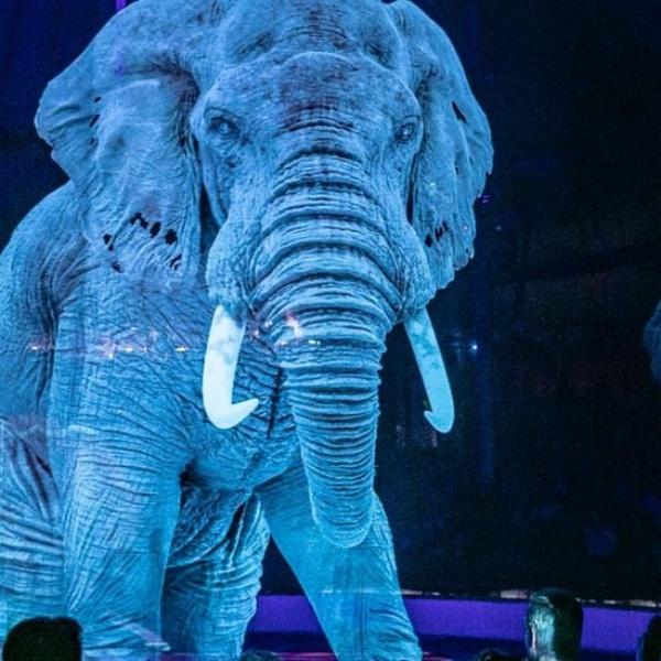 Wirtualne zwierzęta w cyrku. Trend trafił też do Polski