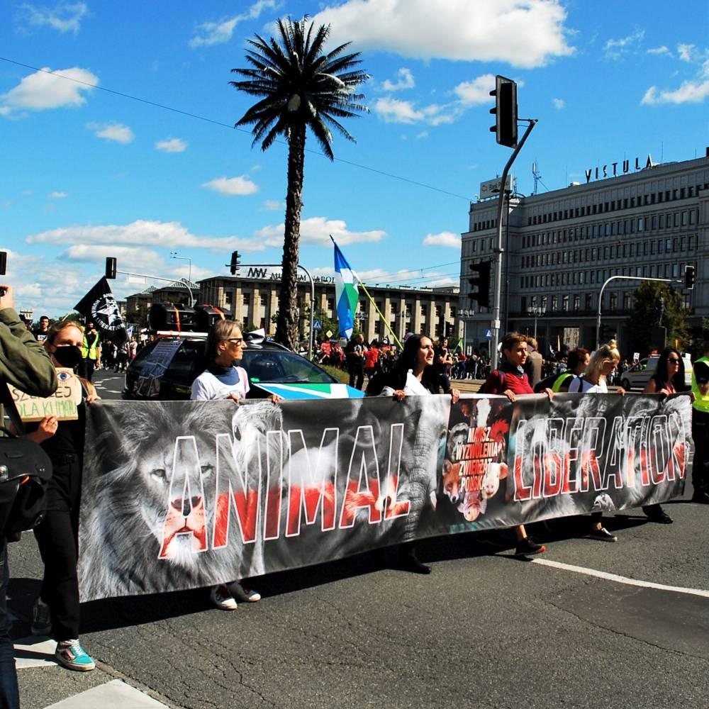 Marsz Wyzwolenia Zwierząt 2021 w obiektywie Joanny Hasiak